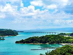 ハワイの大自然や挙式イメージ動画が追加されます!